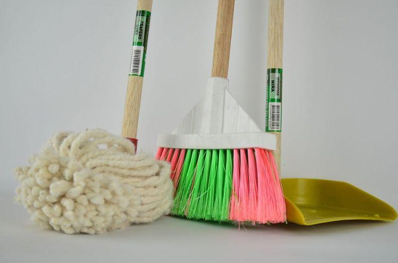 پاکسازی خانه از شپش